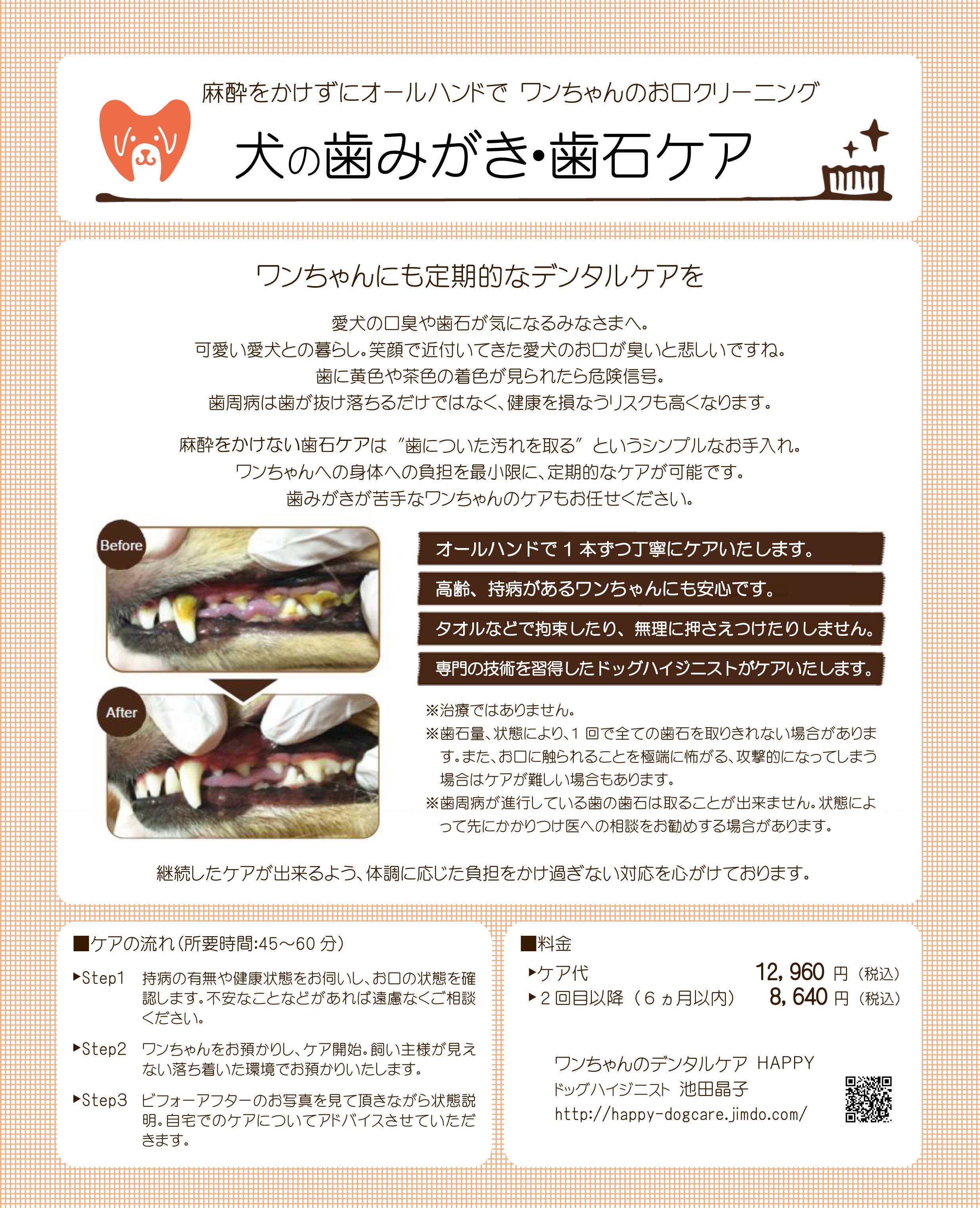 オールハンドの歯石・歯垢ケア